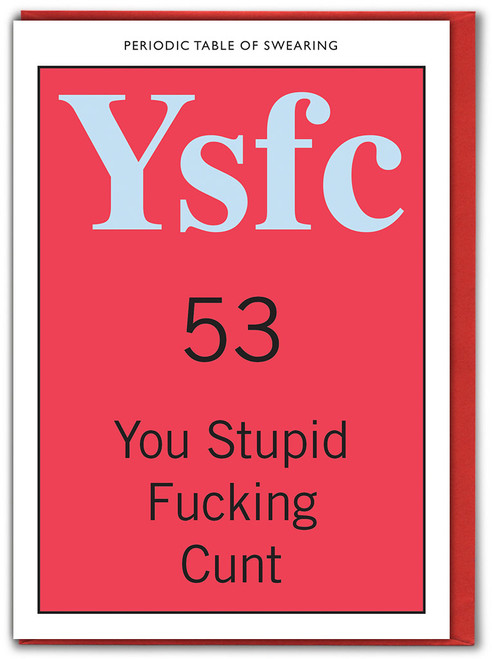 You Stupid Fucking Cunt Card