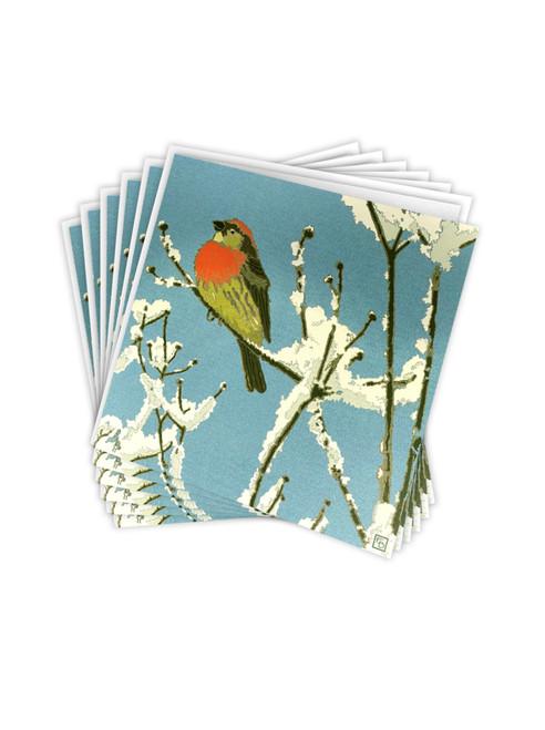 Multi Pack of 6 Christmas Cards - Little Winter Bird By Emily Burningham