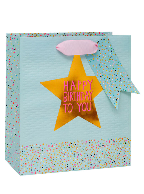 Luxury Blue/Pink Medium Gift Bag With Ribbons by Paper Salad