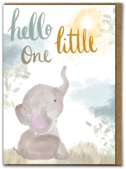 Hello Little One New Baby Greetings Card