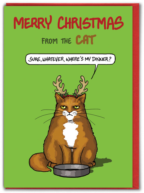 Merry Christmas From The Cat - Sure Whatever