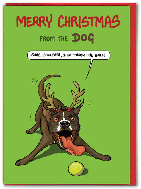 Merry Christmas From The Dog - Sure Whatever