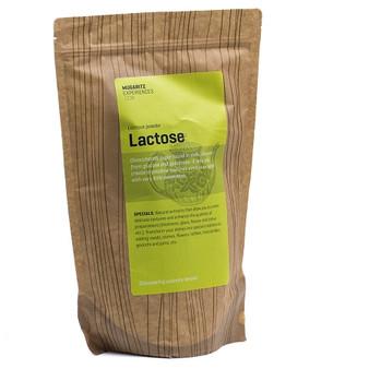 Mugaritz Lactose