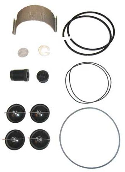 Fill-Rite Fill-Rite 5200KTF1828 / Rebuild Kit 5200 Series Pump