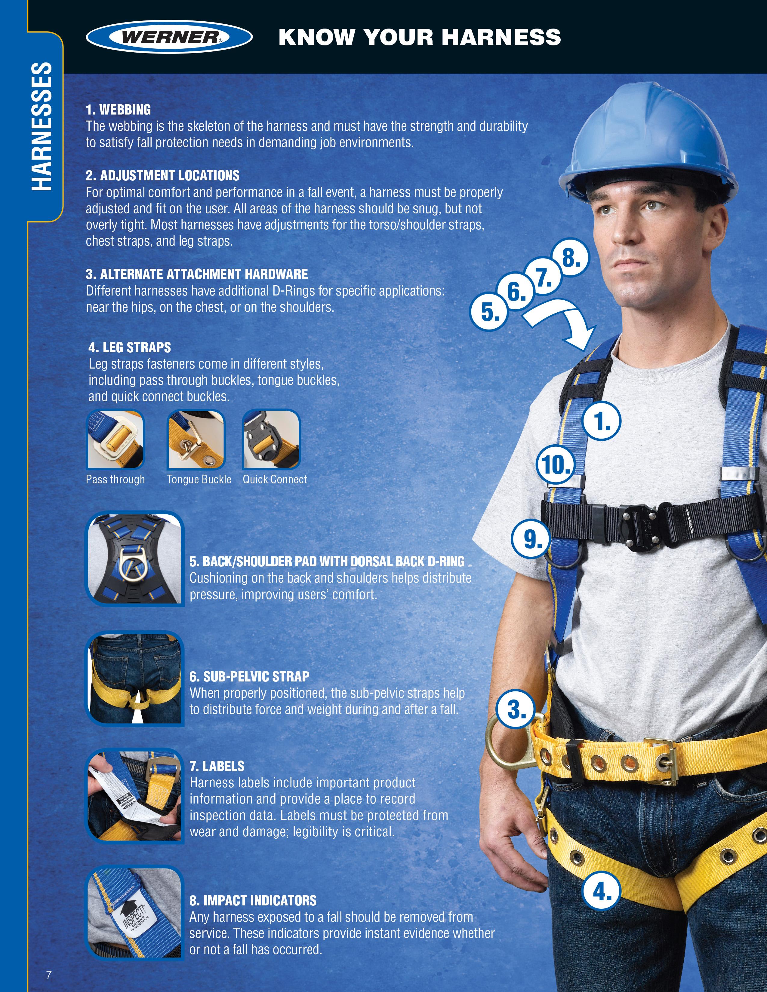 c250-harness-a.jpg