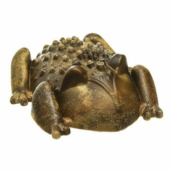 Chew-A-Bulls®Horned Toad