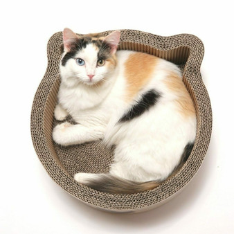 Cat-headed Scratcher  Bed