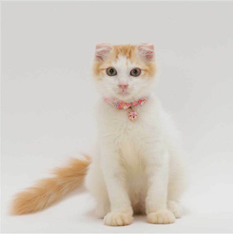 Chirimen Cat Collar with Clover Bell (Pastel Pink)