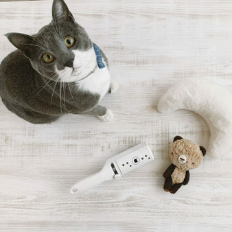 Purrfection Neat & Easy Feline Hair Remover