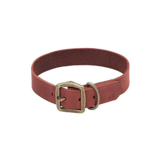 "Circle T® Rustic Leather Town Dog Collar, Brick Red, 3/4"" x 20"""