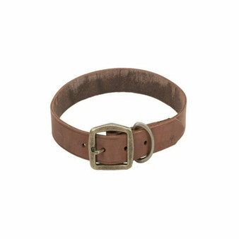 "Circle T® Rustic Leather Town Dog Collar, Chocolate, 3/4"" x 20"""