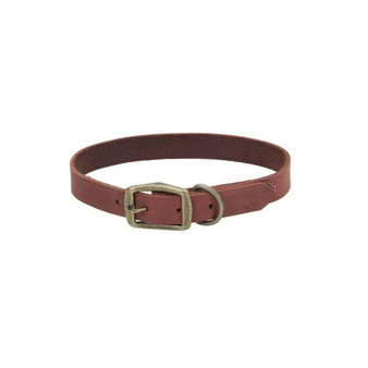 "Circle T® Rustic Leather Town Dog Collar, Brick Red, 1"" x 22"""