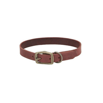 "Circle T® Rustic Leather Town Dog Collar, Brick Red, 1"" x 24"""