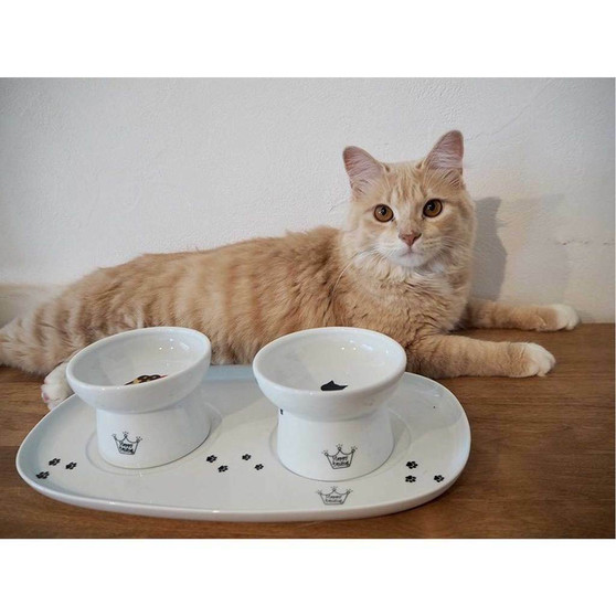Dining Tray (Double)