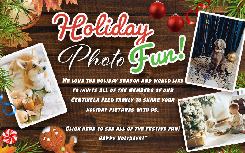 Holiday photo fun! We love the holiday season and would like to invite all of the members of our Centinela Feed family to share your holiday pictures with us. Click here to see all of the festive fun! Happy Holidays!