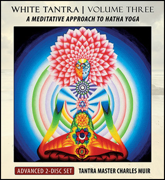 White Tantra Yoga Vol Iii Advanced 2 Cd Source School Of Tantra Yoga
