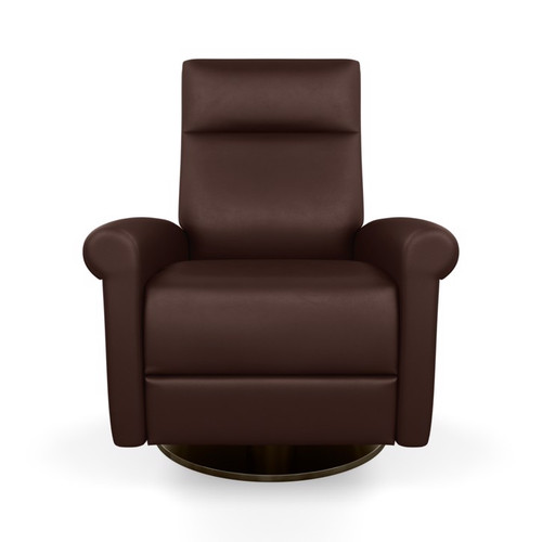 Leather Ada Comfort Recliner by American Leather at the Artful Lodger in Charlottesville, VA