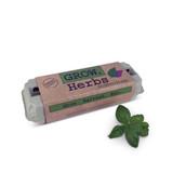 grow-your-own herbs garden kit