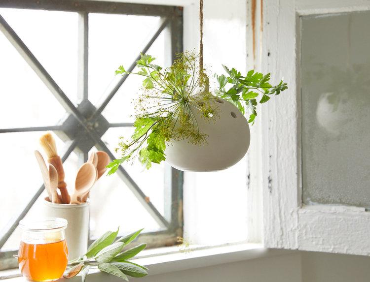 hanging frog vase