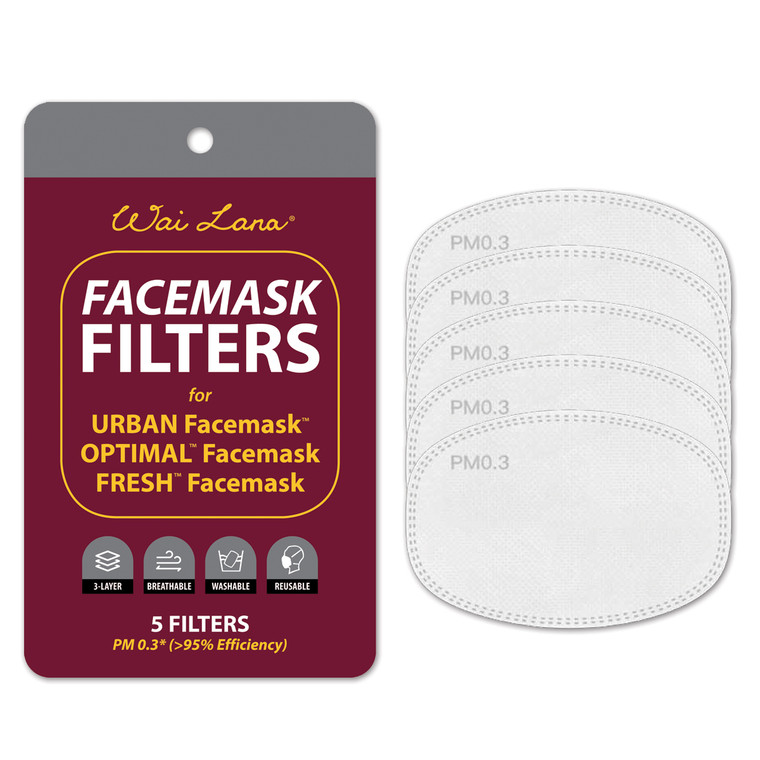 Facemask Filters