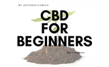 ​CBD for Beginners: Best CBD Oil and Topicals