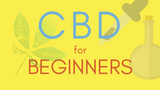 ​CBD Products for Beginners: Best CBD Oil and Topicals