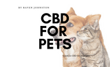 ​Guide to CBD for Pets