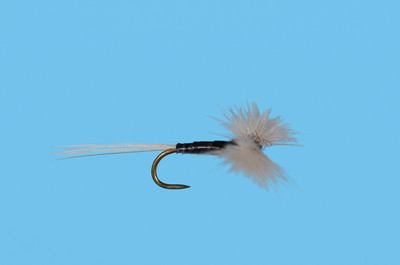 CDC Trico Spinner