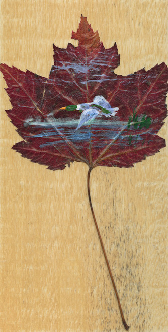 Mallard Duck Maple Leaf Painting