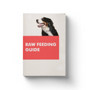 RAW Feeding Plan