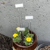 C Series Zinc Garden Markers
