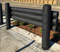 Biosymph Ltd - Water Based Fence Paint - Vanta Black