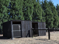 biosymph - shed coated with BitPost Timber Stain and Preserver