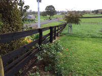biosymph - post and rail fence stained with BitPost Timber Stain and Preserver