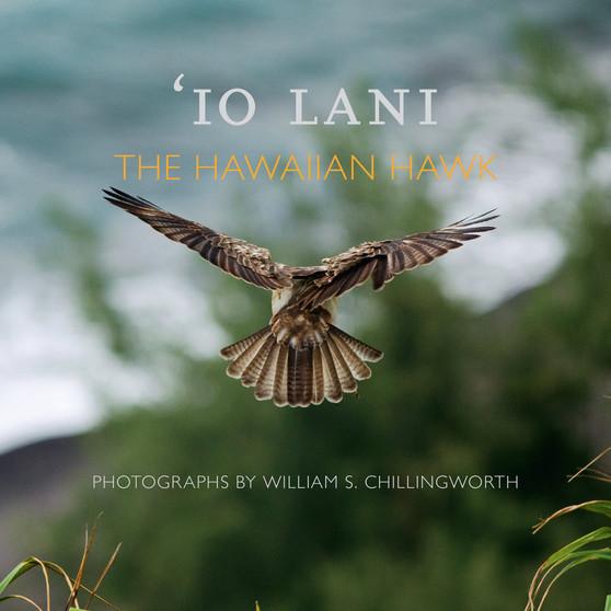 Io Lani : The Hawaiian Hawk
