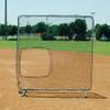 Softball Collegiate Pitchers Protector