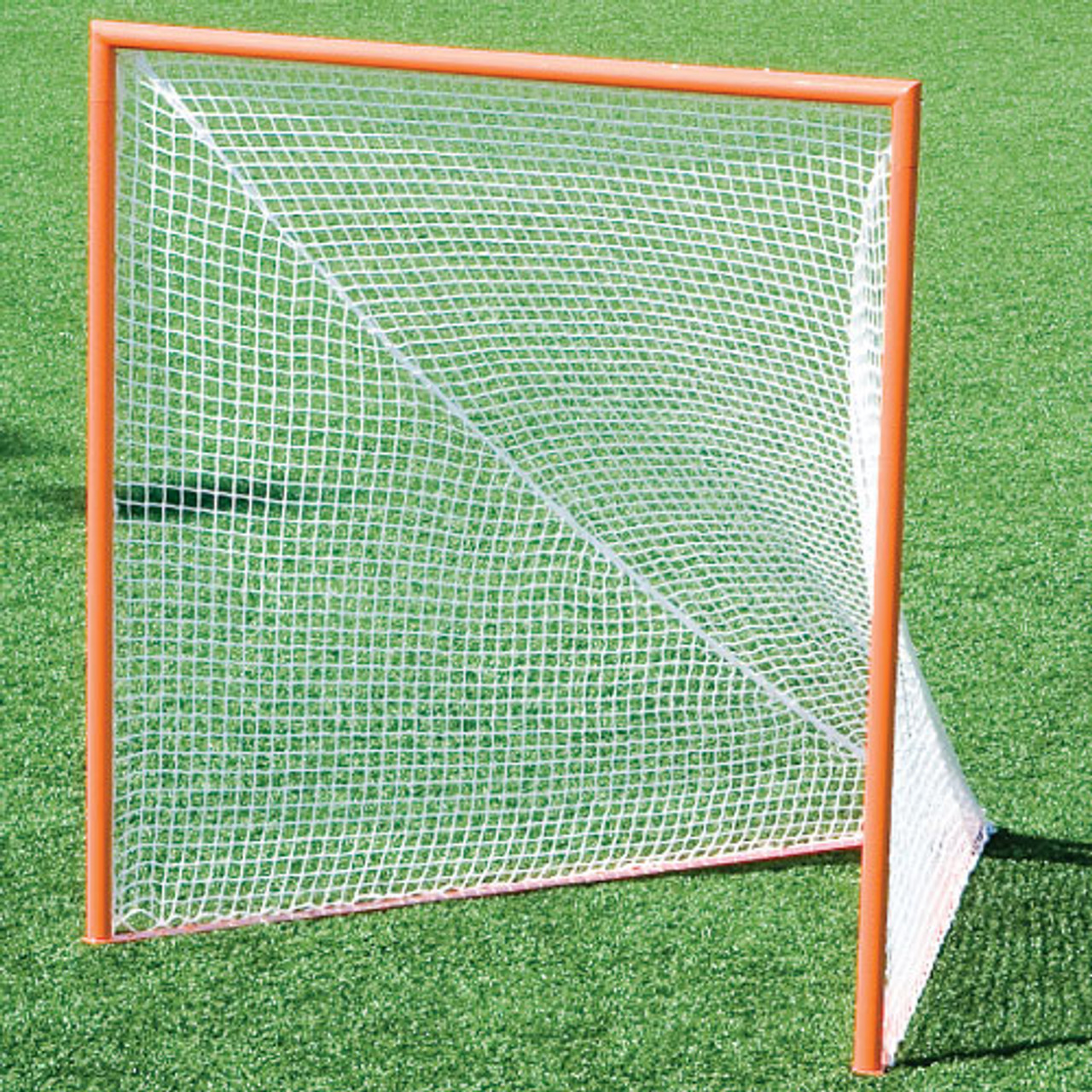 Official Lacrosse Goal and Net