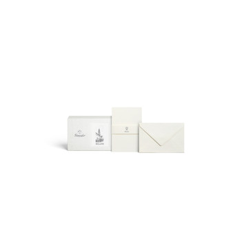 Pineider Milano Box of 12 cards and 12 envelopes - form. 9 /Confezione 12 cart. + 12 buste - Form. 9
