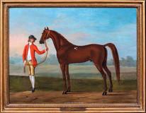 "18th Century English Horse ""Wilson's Arabian"" by Thomas Spencer (1700-1763)"