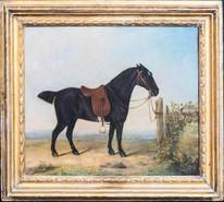18th Century English Portrait Saddled Dark Bay Horse DANIEL CLOWES (1774-1820)
