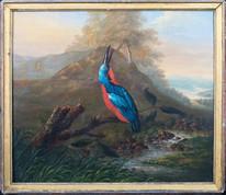 18th Century English Kingfisher Bird Study River Philip Reinagle (1749-1833)