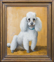 Large 20th Century English School Portrait Of A White Toy Poodle Signed