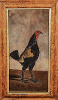 19th Century English School Portrait Of A Fighting Cock Antique Oil Painting