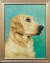Early 20th Century Labrador / Golden Retriever Dog Portrait Antique Oil Painting