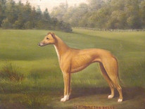 19th Century English Greyhound Dog Portrait Antique Oil Painting Henry CROWTHER