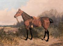 "Large 19th Century Bay Hunter Horse Portrait of 'GIPSY"" by Arthur BATT"