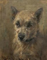 "19th Century Portrait Of A Grey Terrier Dog ""Foxy"" by Robert Alexander"