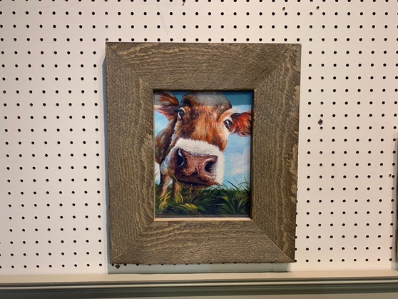 Cow Framed Picture