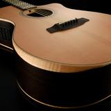 The 2020 Relaunch of Walden Guitars