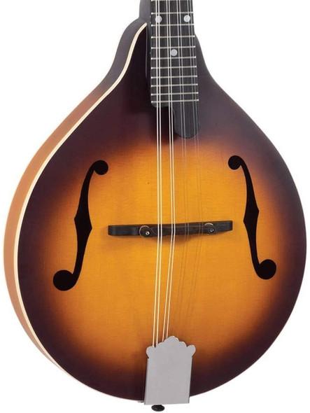Recording King RAM-3-TS Dirty 30's A-Style Mandolin